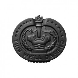 Odznak DRILL INSTRUCTOR - ČERNÝ